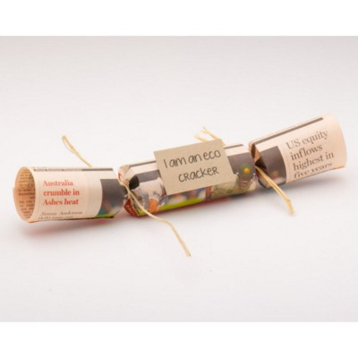 ECO CHRISTMAS CRACKER