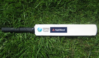 17 INCH MINI WOOD CRICKET BAT
