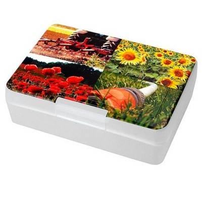 IMOULD BRANDED PLASTIC STORAGE LUNCH BOX
