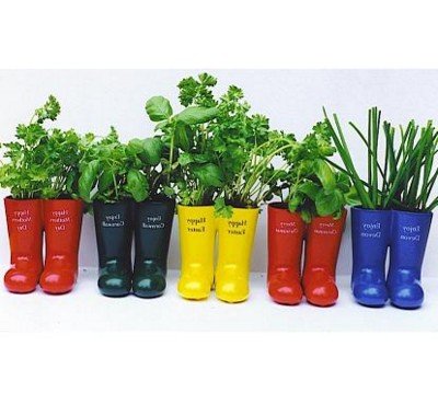 WELLY WELLINGTON BOOT HERB PLANT POT
