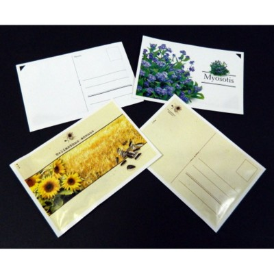 STANDARD POSTCARD SEEDS PACKET